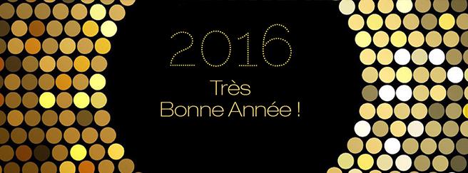 bonne-annee-2016-FR-02